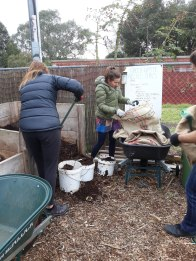 Dividing up the compost ..