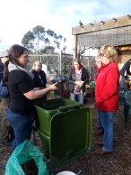 Michelle setting up Hungry Bin worm farm