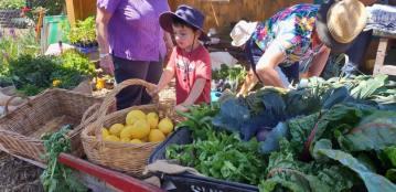 Fresh produce stall